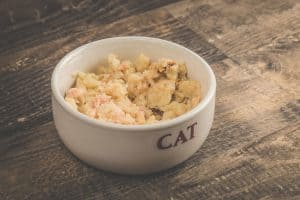 Healthy and delicious wet cat food, all natural and organic, with chicken and rice, How To Puree Wet Cat Food