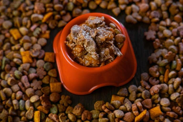 A bowl of wet cat food placed on top of different kinds of cat food, Which Wet Cat Foods Have The Most Gravy?