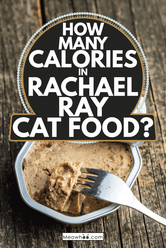 wet cat food inside aluminum pack with fork, wooden background. How Many Calories In Rachael Ray Cat Food